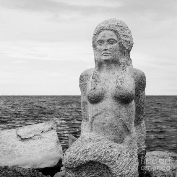 Photograph - Sirene by Anita Kovacevic