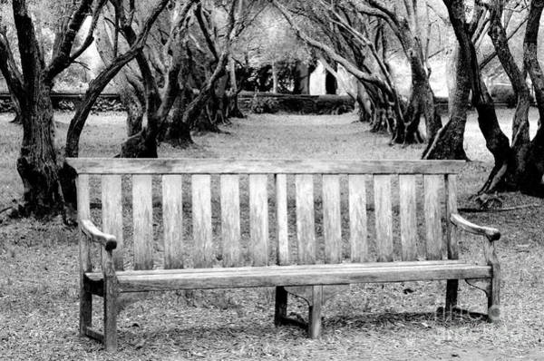 Filoli Photograph - Sit by Amy Fearn