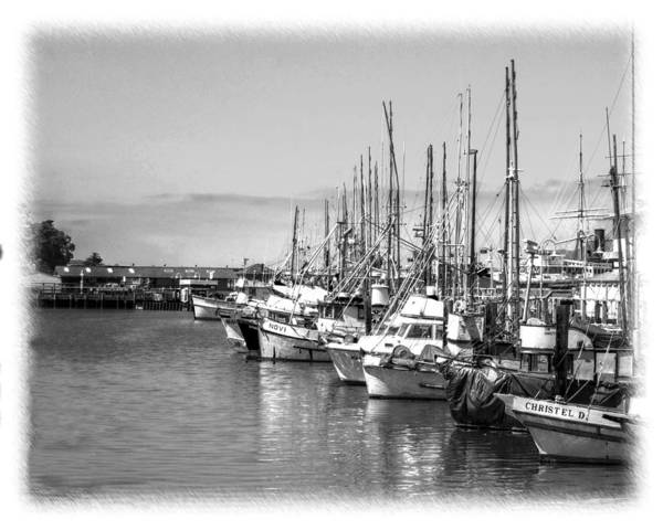 Photograph - Sitten In The Harbor by William Havle