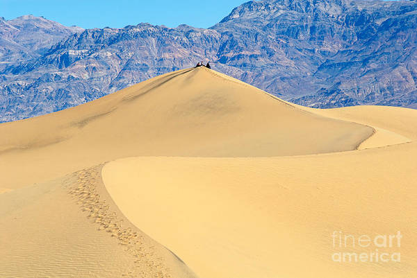 Death Valley Photograph - Sitting Pretty -top Of A Large Sand Dune In Death Valley National Park In California by Jamie Pham