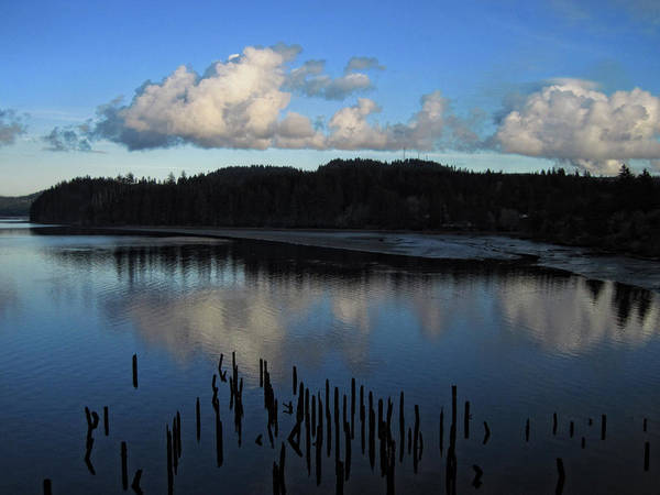 Photograph - Siuslaw River 1 by Lara Ellis