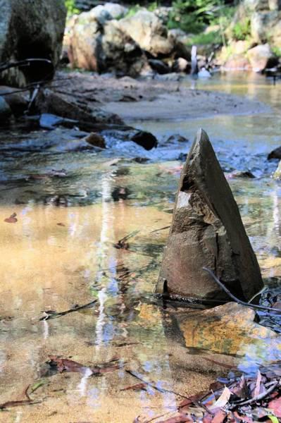 Photograph - Six Mile Creek by David Rich