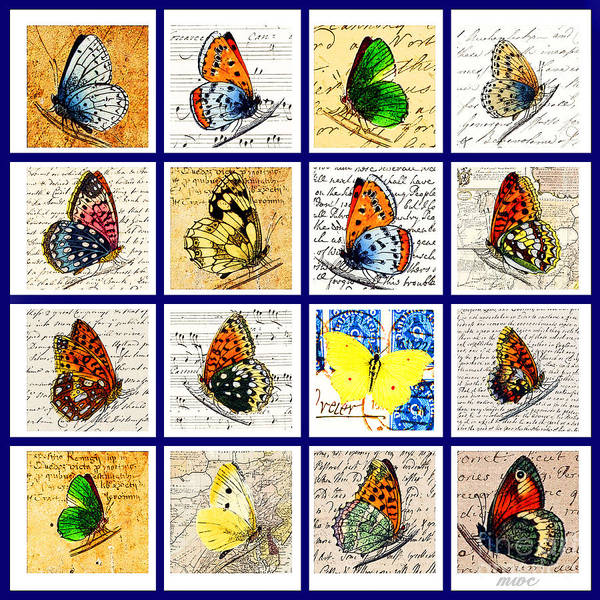 Painting - Sixteen Butterflies by Marian Cates