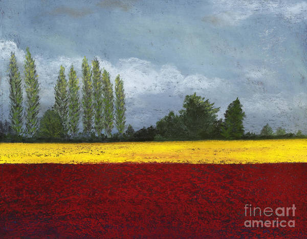 Skagit Valley Painting - Skagit Colors  by Ginny Neece