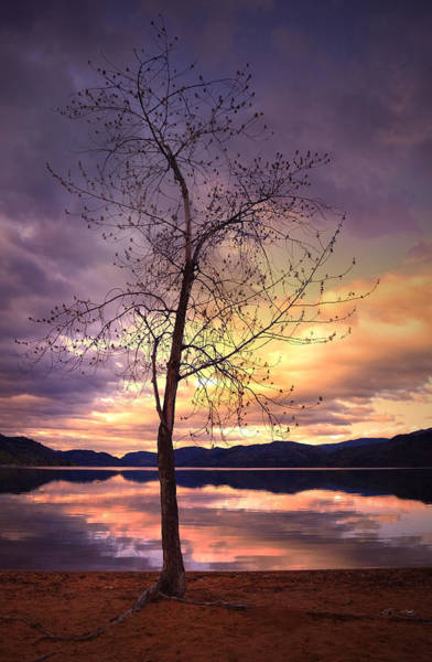 Vallery Photograph - Skaha Lake On A Saturday Morning by Tara Turner