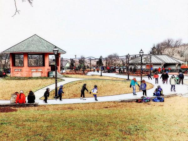 Photograph - Skating At Bannerman Park by Zinvolle Art