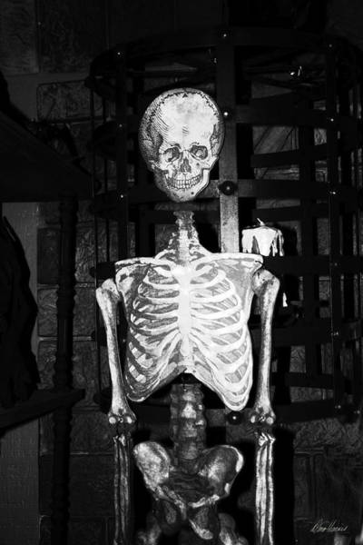 Photograph - Skeleton In The Dungeon by Diana Haronis