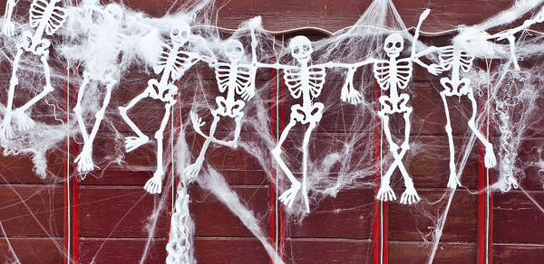 31st Photograph - Skeletons by Tom Gowanlock