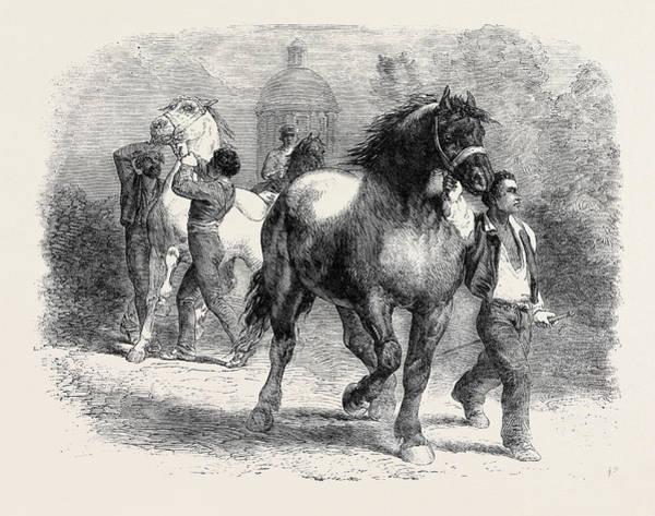 Sketch From The Horse Fair Art Print