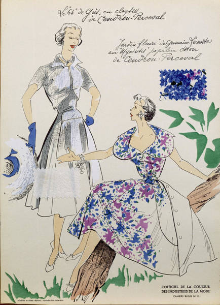 Elegant Drawing - Sketches And Fabric Swatches by French School