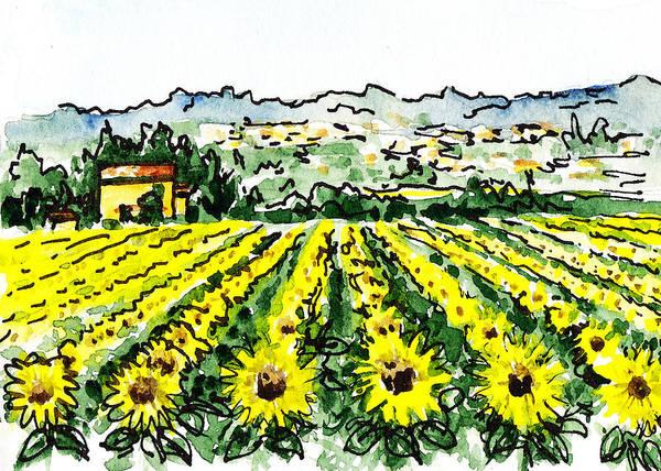 Sketching Painting - Sketching Italy Sunflowers Of Tuscany by Irina Sztukowski