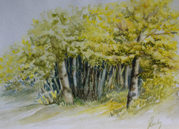 Painting - Sketching Trees by Joanne Smoley