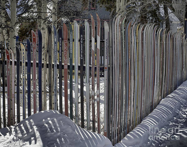 Photograph - Ski Fence by Bitter Buffalo Photography