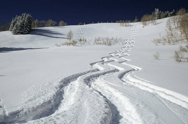 Ski Tracks Wall Art - Photograph - Ski Tracks In Big Cottonwood Canyon by Howie Garber