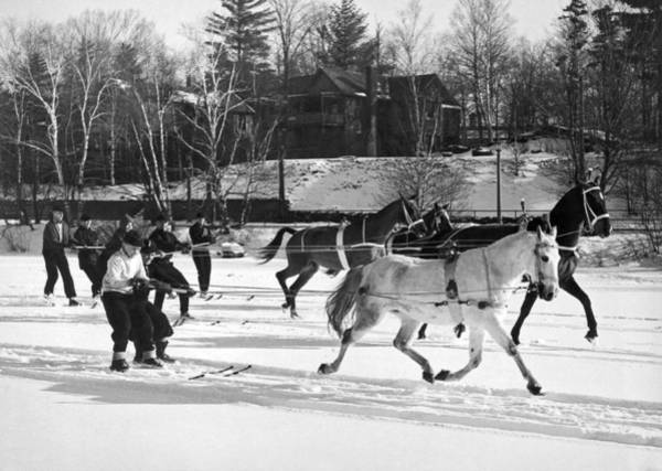 Caucasian Wall Art - Photograph - Skijoring At Lake Placid by Underwood Archives