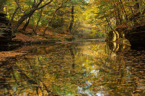 Photograph - Skillet Creek Serenity by Leda Robertson