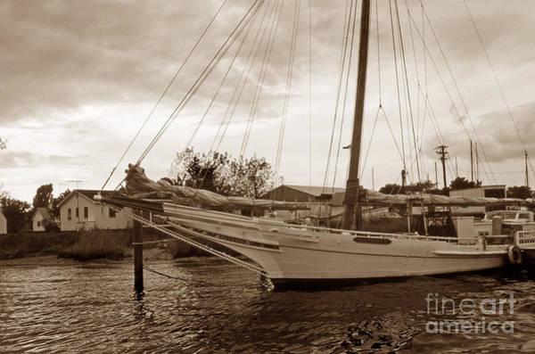 Skipjack Wall Art - Photograph - Skipjack In Port by Skip Willits