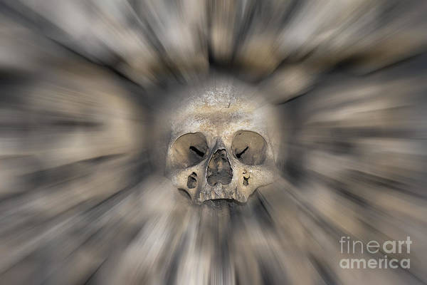 Wall Art - Photograph - Skull - Fear And Trembling  by Michal Boubin