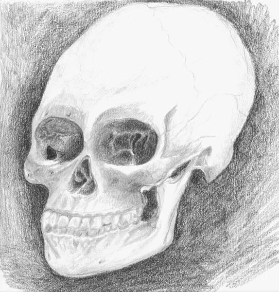 Sonrisa Wall Art - Drawing - Skull by J M Lister