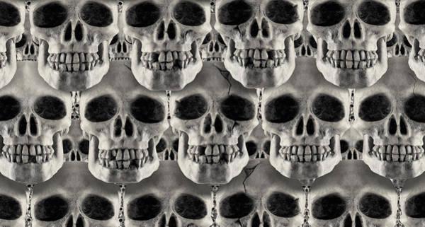 Human Bone Wall Art - Photograph - Skulls 1 by Mike McGlothlen
