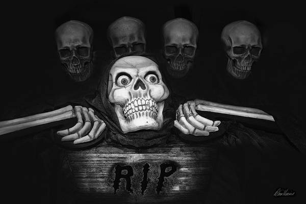 Photograph - Skulls by Diana Haronis