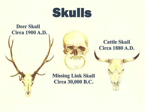 Missing Painting - Skulls by Michael Vigliotti