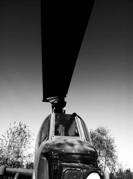 Photograph - Sky Bird Bw by Jamie Lynn