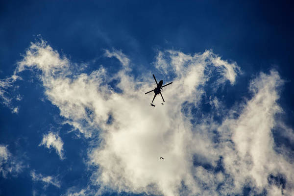 Free Dive Wall Art - Photograph - Sky Diving by Chris Thodd