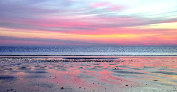 Photograph - Sky Pink by Joanne Brown