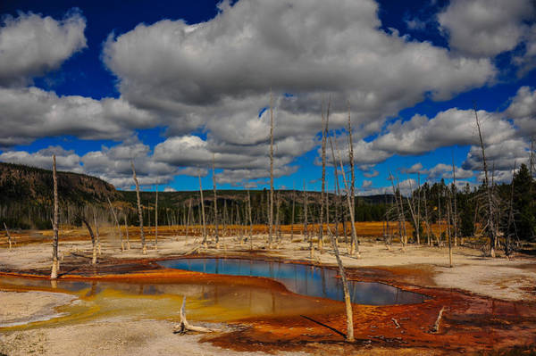 Photograph - Sky Pool by Harry Spitz