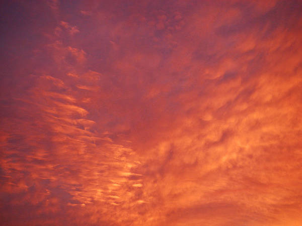 Wall Art - Photograph - Skyfire by Laurie Stewart