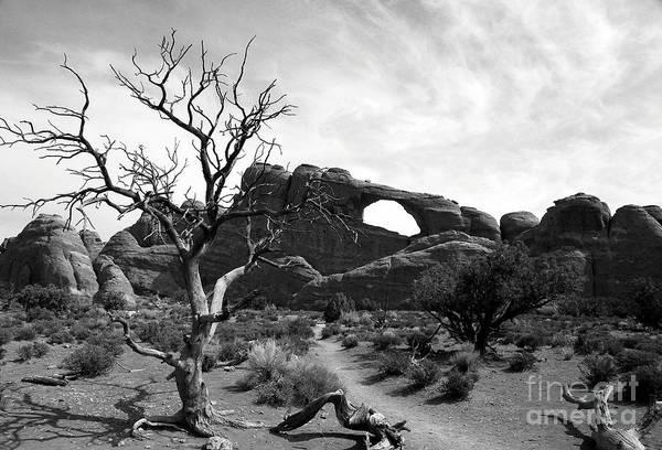 Photograph - Skyline Arch 3 Bw by Mel Steinhauer