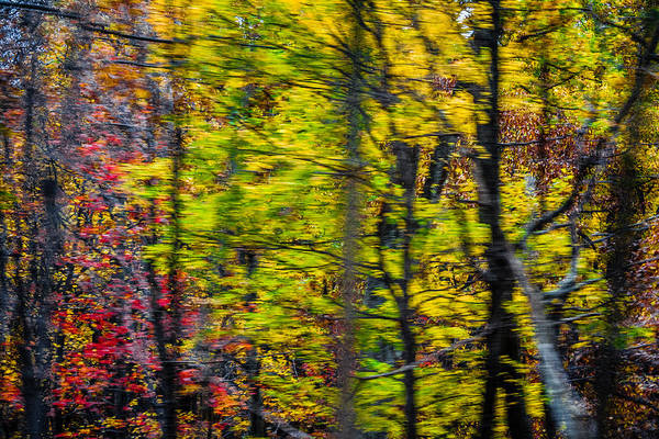 Photograph - Skyline Drive 2 by Karen Saunders