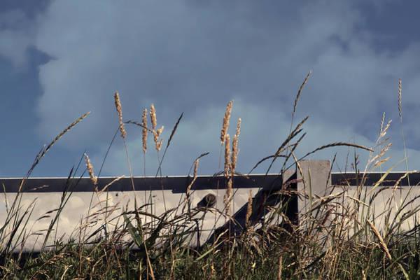 Wall Art - Photograph - Skyline by Odd Jeppesen