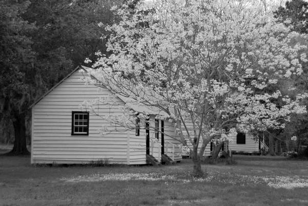 Wall Art - Photograph - Slave Cabins In Black And White by Suzanne Gaff