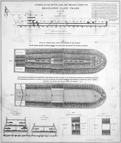 Slavery Photograph - Slave Ship Diagrams by Library Of Congress/science Photo Library