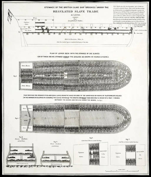 Wall Art - Photograph - Slave Ship Middle Passage Stowage Diagram  1788 by Daniel Hagerman