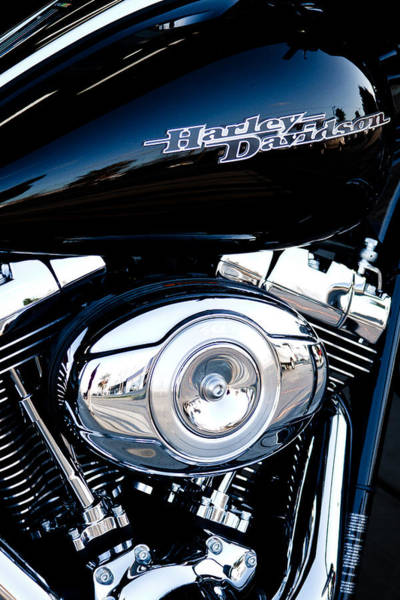 Photograph - Sleek Black Harley by David Patterson