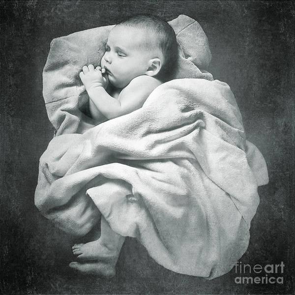 Photograph - Sleep Like A Baby by Cindy Singleton