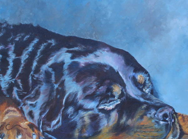 Rottweiler Painting - Sleeping Beauty by Genny Goodman