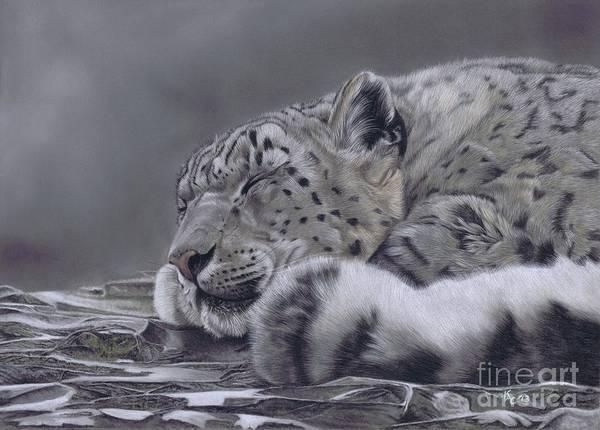 Pastel - Sleeping Beauty by Karie-Ann Cooper