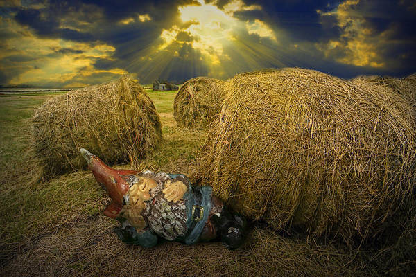 Photograph - Sleeping Garden Gnome At Sunrise by Randall Nyhof