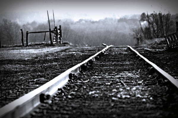 Photograph - Sleeping On The Tracks by Susan Maxwell Schmidt