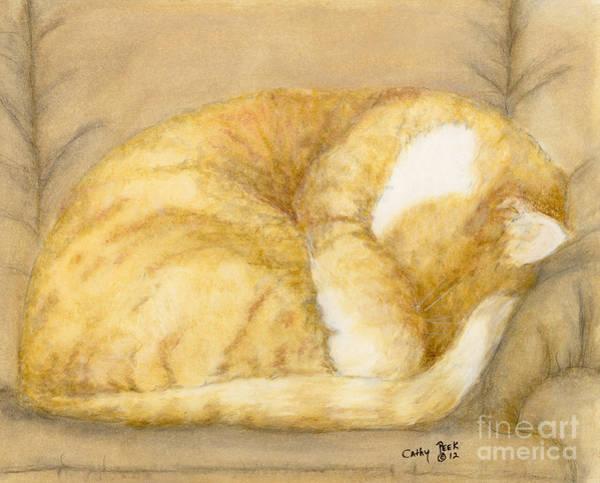 Cathy Painting - Sleeping Orange Tabby Cat Cathy Peek Animals by Cathy Peek