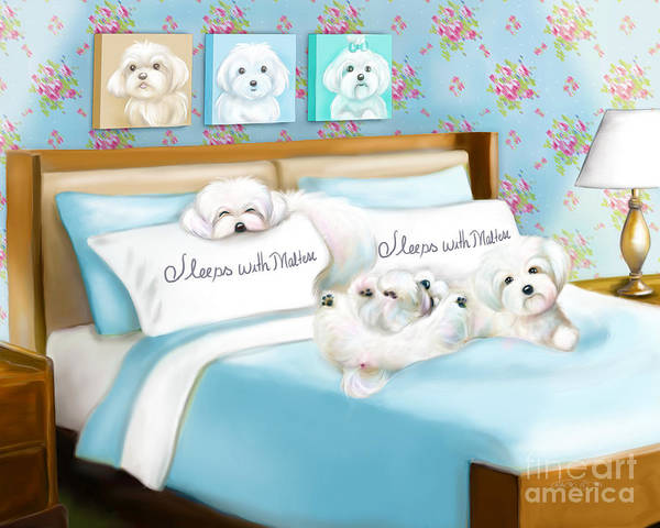 Painting - Sleeps With Maltese by Catia Lee