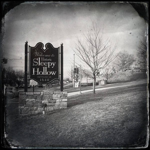 Photograph - Sleepy Hollow by Natasha Marco