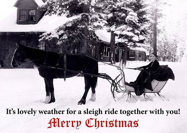 Wall Art - Photograph - Sleigh Ride Christmas Greeting Card by Communique Cards