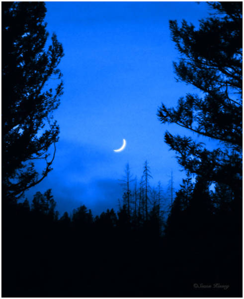 Photograph - Slice Of Moon by Susan Kinney