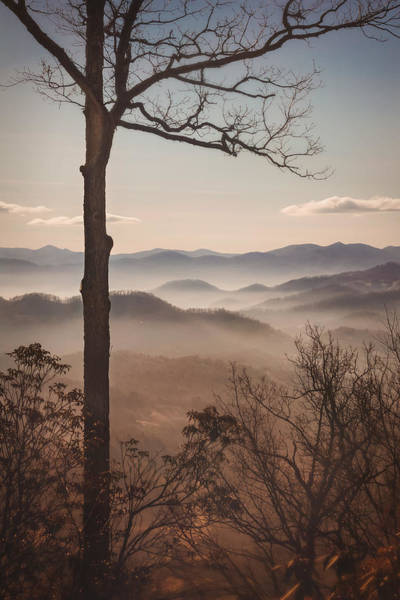 Photograph - Slice Of The Smokies by Maria Robinson