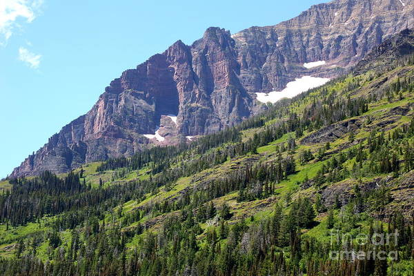 Photograph - Sloping Mountain At Two Medicine Lake by Carol Groenen